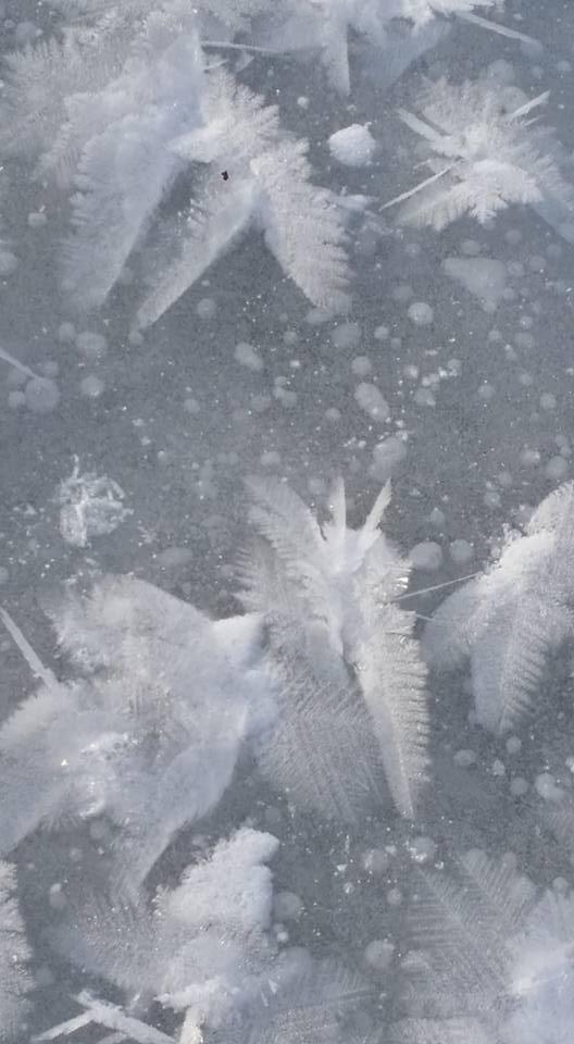 Ice Flakes 3