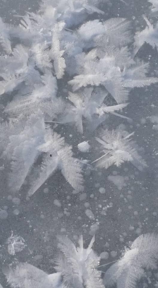 Ice Flakes 4