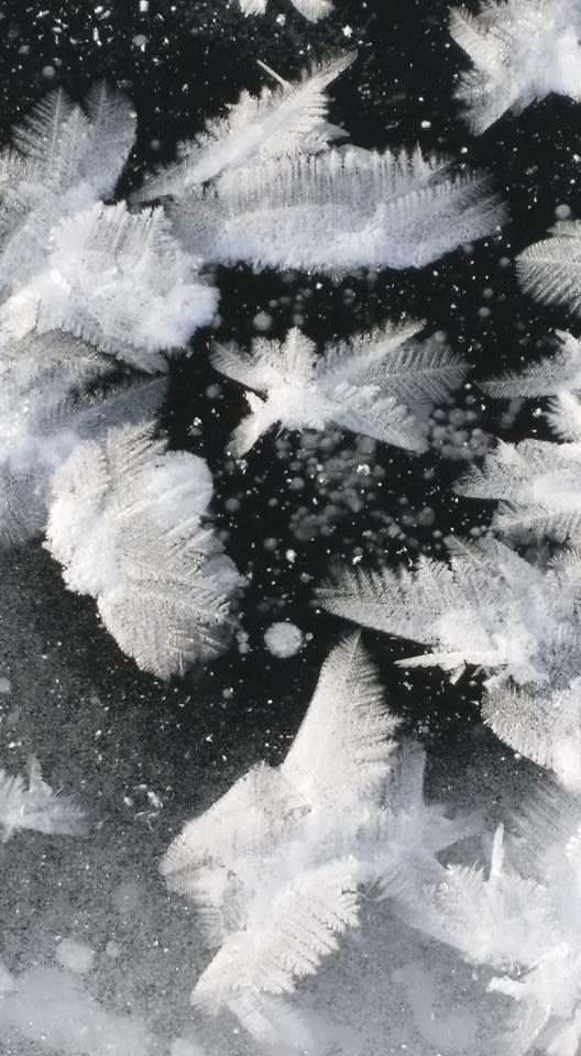 Ice Flakes 6